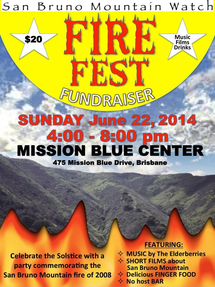 FireFestFlyer_2014